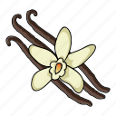 cooking, eco, food, plant, seasoning, spice, vanilla icon