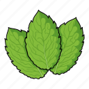 eco, food, grass, leaf, mint, plant, spice icon