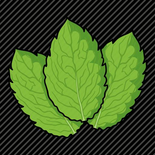 eco, food, grass, leaf, mint, plant, spice icon