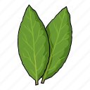 eco, food, laurel, leaf, plant, seasoning, spice icon