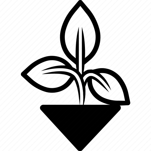 basil, garden, green, herb, plant icon