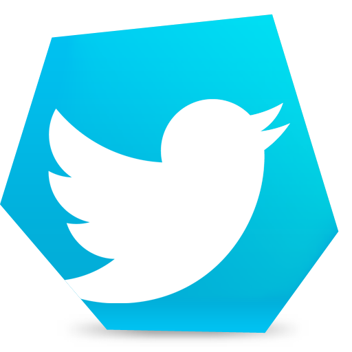 bird, social, tweet, twitter icon