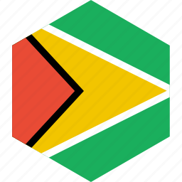 country, flag, guyana, world icon