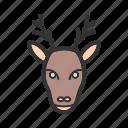 animal, decoration, deer, hornes, moose, reindeer, winter