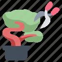 bonsai, garden, gardening, japan, japanese, plant, tree icon