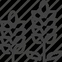 flower, hokkaido, japan, lavender icon