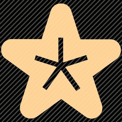 beach, fish, holiday, sea, star, vacations icon