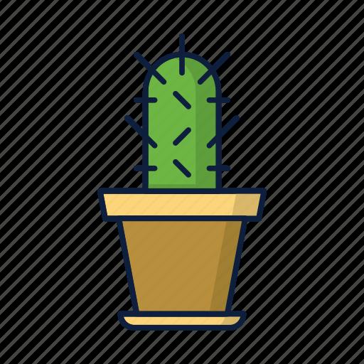 cactus, desert, gardening, nature, plant icon