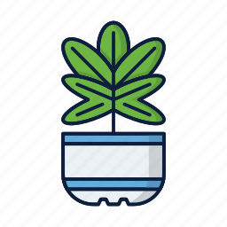 comfort, eco, flower, grow, home, plant, pot icon