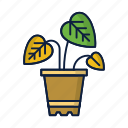 comfort, eco, flower, home, leaves, plant, pot icon