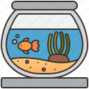 aquatic, bowl, decoration, fish, pet icon