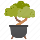 bonsai, decoration, garden, plant, pot