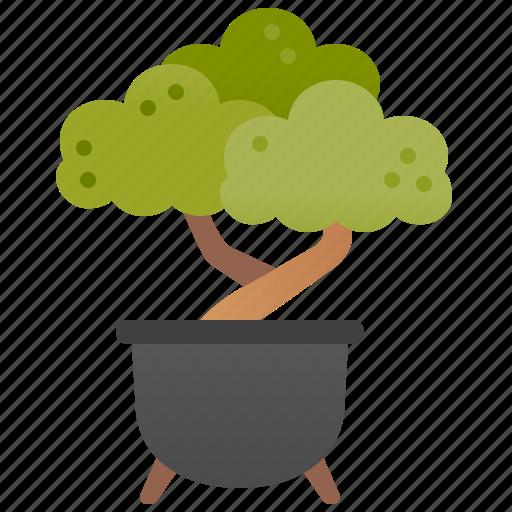 bonsai, decoration, garden, plant, pot icon
