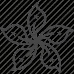 asia, flag, flower, hong kong, travel icon