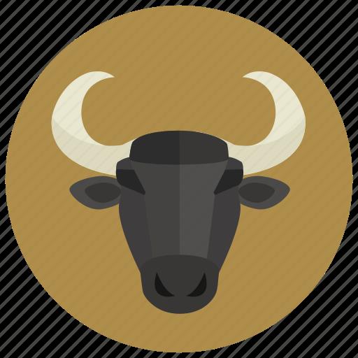 bull, horoscope, sign, taurus, zodiac, zodiacs icon