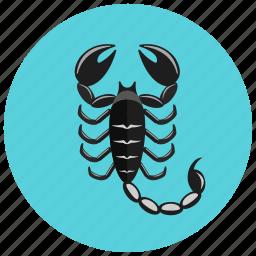 horoscope, scorpio, scorpion, sign, zodiac, zodiacs icon