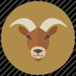 capricorn, goat, horoscope, sign, zodiac, zodiacs icon