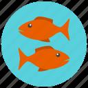 fish, fishes, horoscope, pisces, sign, zodiac, zodiacs