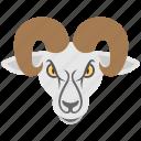 aries, horoscope, ram face, ram head, zodiac sign icon