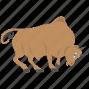 astrological symbol, bull, horoscope, taurus, zodiac sign icon