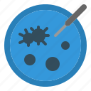 bacteria, biology, disk, laboratory, microorganism, petri, plate icon