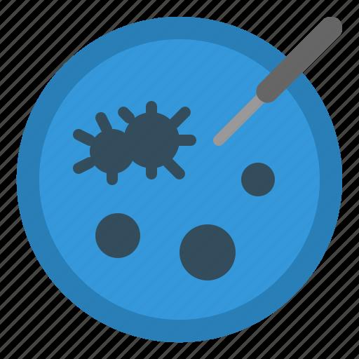 bacteria, biology, disk, laboratory, microorganism, petri, plate icon