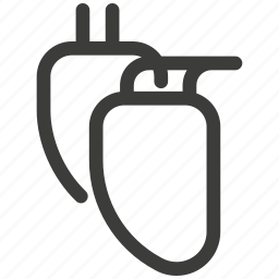 bodies, cardiologist, heart, hospital, medical, motor, pulse icon