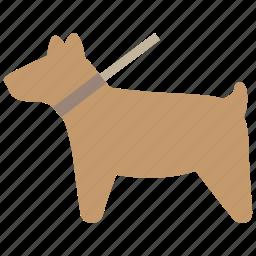 animal, animals, dog, pet, walk icon