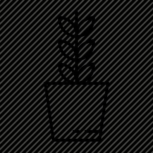 botanic, growth, herbal, home plant, house plant, leaf, pot icon