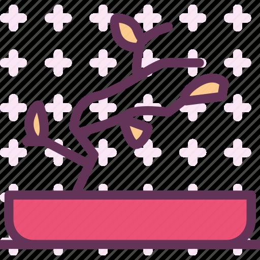 bonsai, decor, green, plant icon