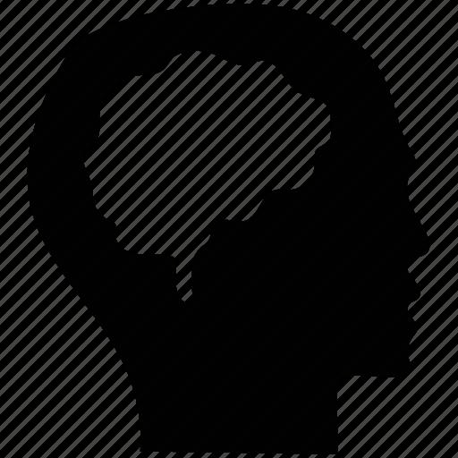 Human brain, human head, sensible, sharp, smart, wise icon - Download on Iconfinder
