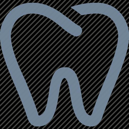 anatomy, dentistry, healthy, human, medical, organs, teeth, tooth icon
