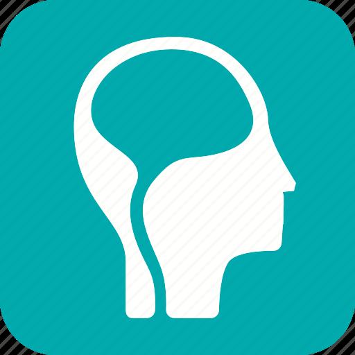 anatomy, body, brain, health, human, mind, organ icon