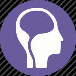 anatomy, body, brain, health, human, organ, part icon