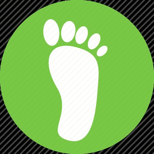 anatomy, body, feet, foot, human, part icon