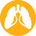 anatomy, body, human, lungs, organ icon
