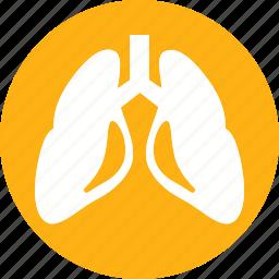 anatomy, body, human, lungs, organ icon
