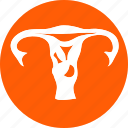 female, fetus, human, human fetus, uterious, uterus, woman icon