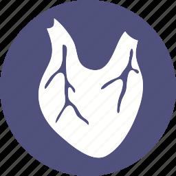 anatomy, body, human, organ, part, stomach, tumar icon