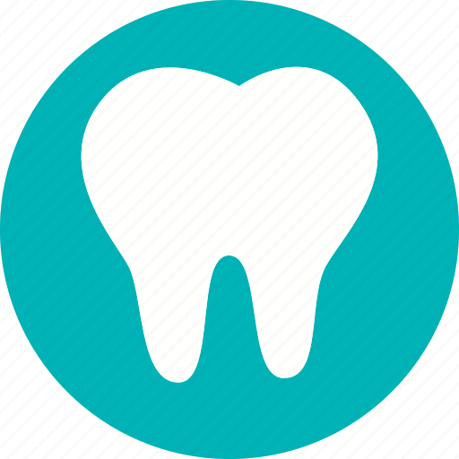 anatomy, body, dental, dentist, human, teeth, tooth icon