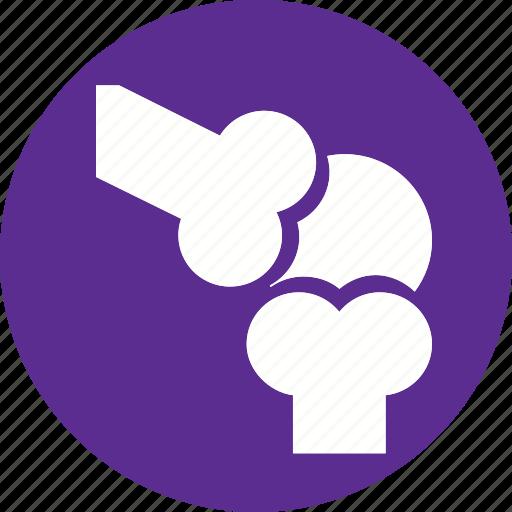 body, bone, healthcare, human, joint, knee, organ icon