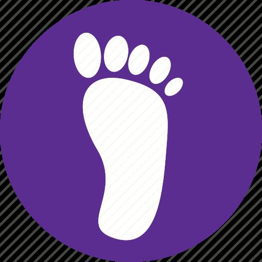 anatomy, body, feet, foot, human, leg, organ icon