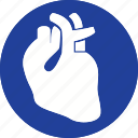 anatomy, care, health, healthcare, heart, medical, organ icon