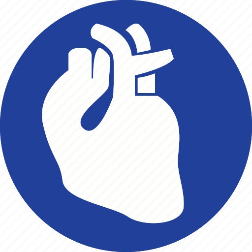 anatomy, care, health, healthcare, heart, medical, organ icon