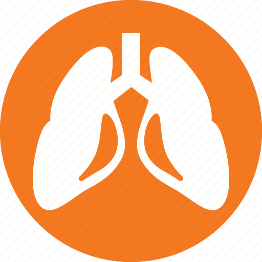 anatomy, body, health, healthcare, human, lungs, organ icon