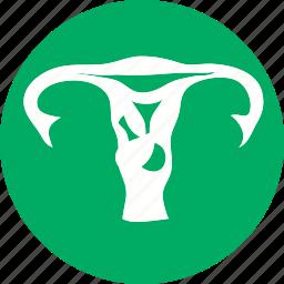 body, female, healthcare, human, lady, uterus, woman icon