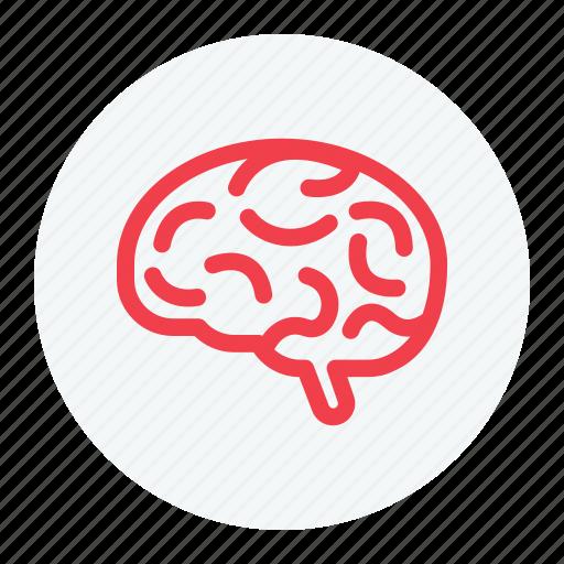 brain, brain icon, brainstorming, neuroscience icon
