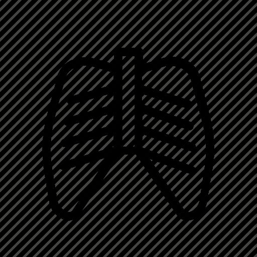 anatomy, bone, human, rib, skeleton icon