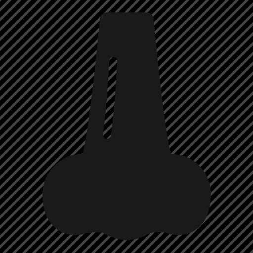 Anatomy, nose, respiration icon - Download on Iconfinder