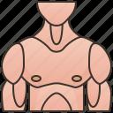 bodybuilder, chest, human, muscular, torso